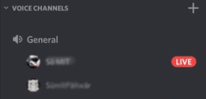 discord screen share on server